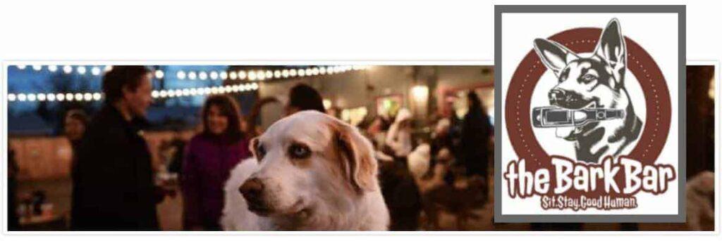 Bars Denver Highlands   Dog Parks Denver   Dog Friendly